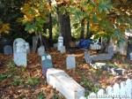 cemetery zombie graveyard